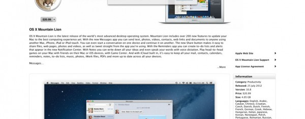 OS X Mountain Lion Error – There was an error in the App Store. Please try again later. (100)