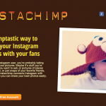 Instachimp